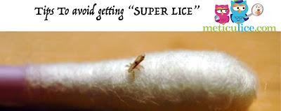 """TIPS to Prevent """"Super Lice"""""""