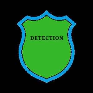 Head Lice Detection